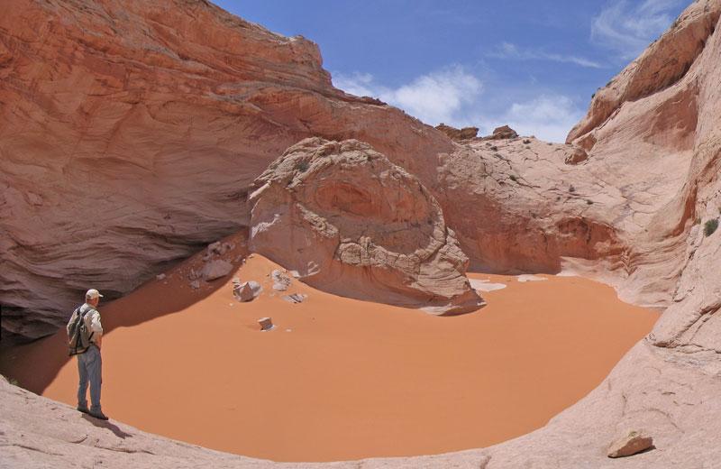 Stereogram Of Navajo Page Sandstone Grains